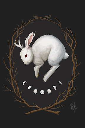 A rabbit with the moon phases