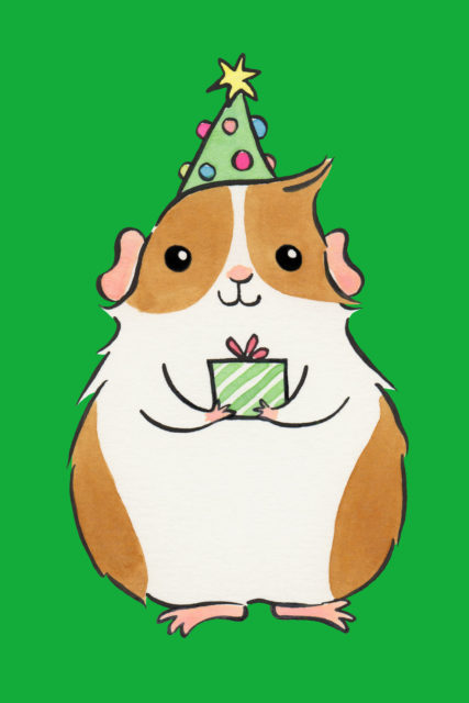 guinea pig holding christmas present with tree topper hat