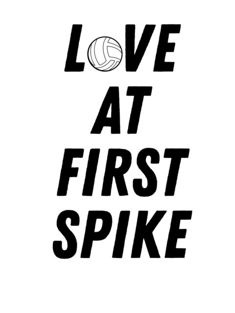 volleyball love at first spike