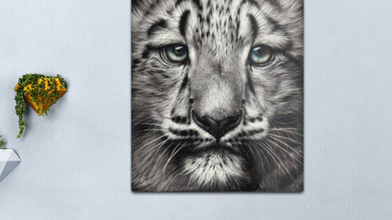 Acrylic vs Metal Prints: Understanding the Difference