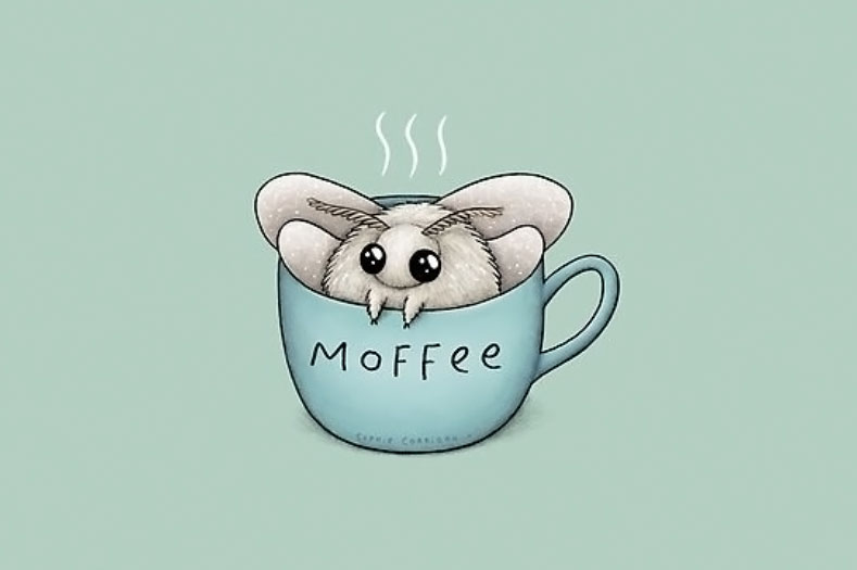 moth in a coffee cup that says moffee