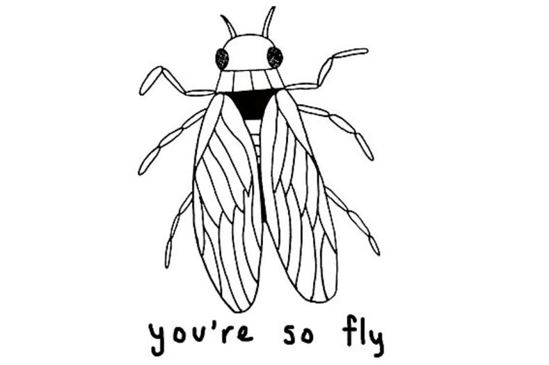 you're so fly
