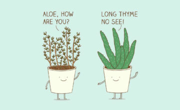 100 Plant Puns and Jokes That'll Plant a Smile On Your Face