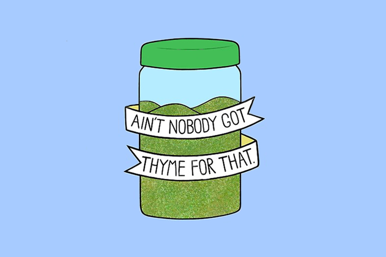 ain't nobody got thyme for that