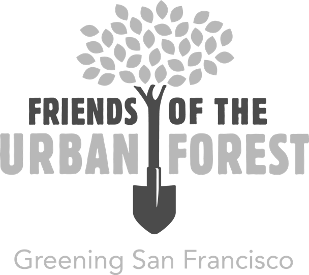 Friends of the Urban Forest | Greening San Francisco